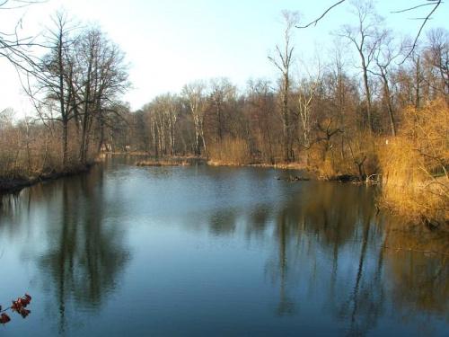 Łacha #Puławy