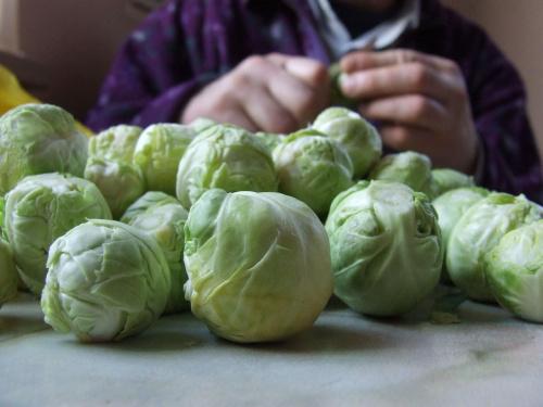 brukselki #brukselki #warzywa #warzywo #zielone #śmieszne #kulki #kuleczki #DużoBrukselek #DużoTego #obrać #ObraćBrukselki #ObieranieBrukselek #MińskMazowiecki #mińsk