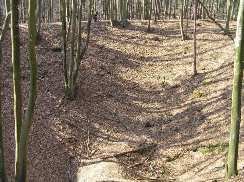 Bursztynowa góra - dziura w ziemi