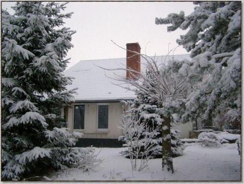 Nasz szałas w zimowej szacie... #zima #krajobrazy #rośliny #śnieg #drzewa #wieś #budowle