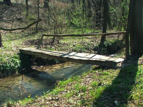 Potok Witoszyński #Witoszyn #rzeka #kładka #mostek