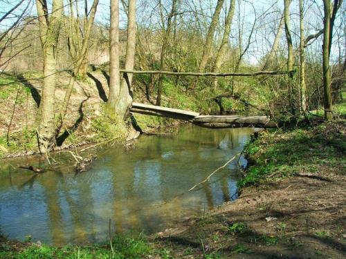 Jedziemy w stronę Celejowa #rzeka #Bystra
