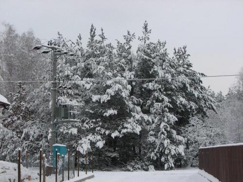 Dąbrowa Chotomowska by Śnieg :)
