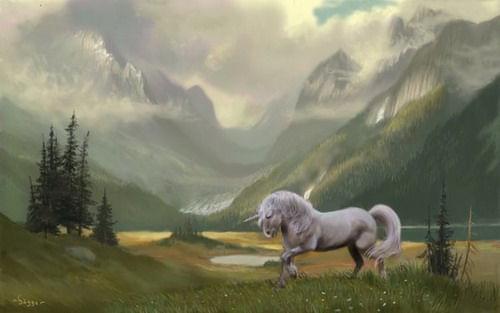 Unicorn XII