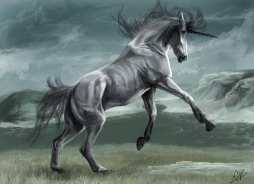 Unicorn V