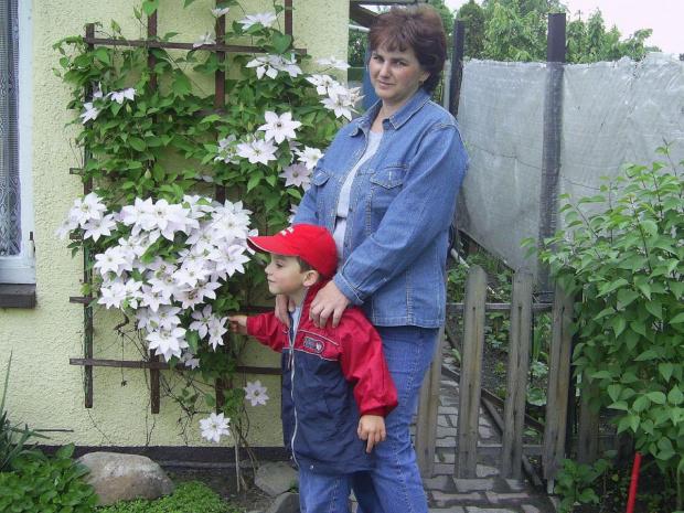 lato na działce 2007