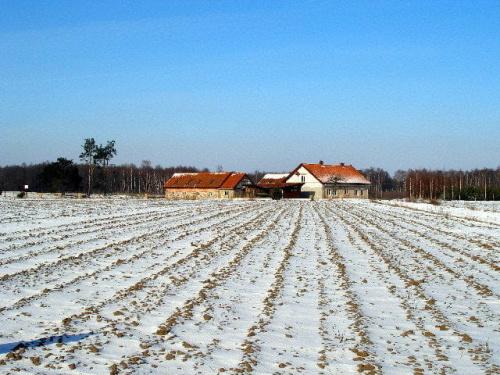 Pejzaże Mazury - wieś Pilchy i okolice #Mazury