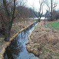 Puławy - kanał odprowadzający nadmiar wody z parkowej łachy #Puławy #park #łacha